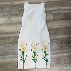 Calvin Klein lined Lilly Dress